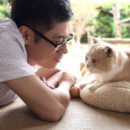 Neko Atsume: Kitty Collector Game App Gets Live-Action Film in 2017