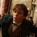 "Hear Mamoru Miyano as Newt Scamander in Japanese ""Fantastic Beasts"" Clip"