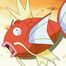 Magikarp Gets Its Own Special Dance Tribute Video