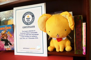 Cardcaptor Sakura Fan in Peru Gets Guinness World Record For Largest Collection